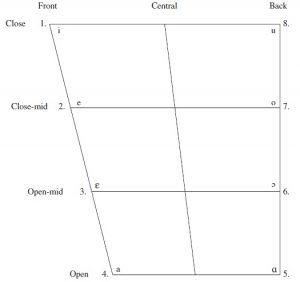 Vowel trapezium Penjelasan Lengkap vowel dan consonant