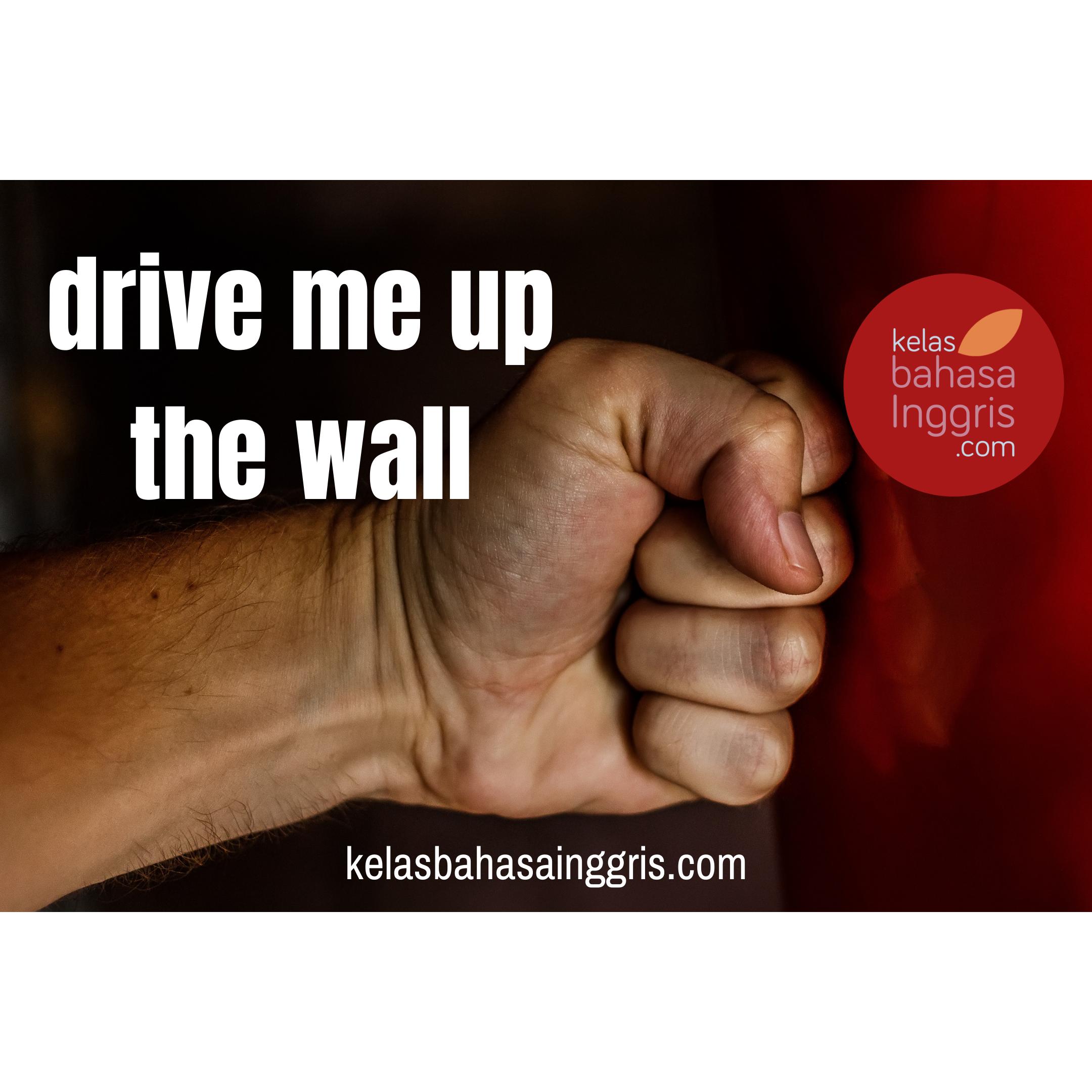 Idiom Bahasa Inggris drive me up the wall