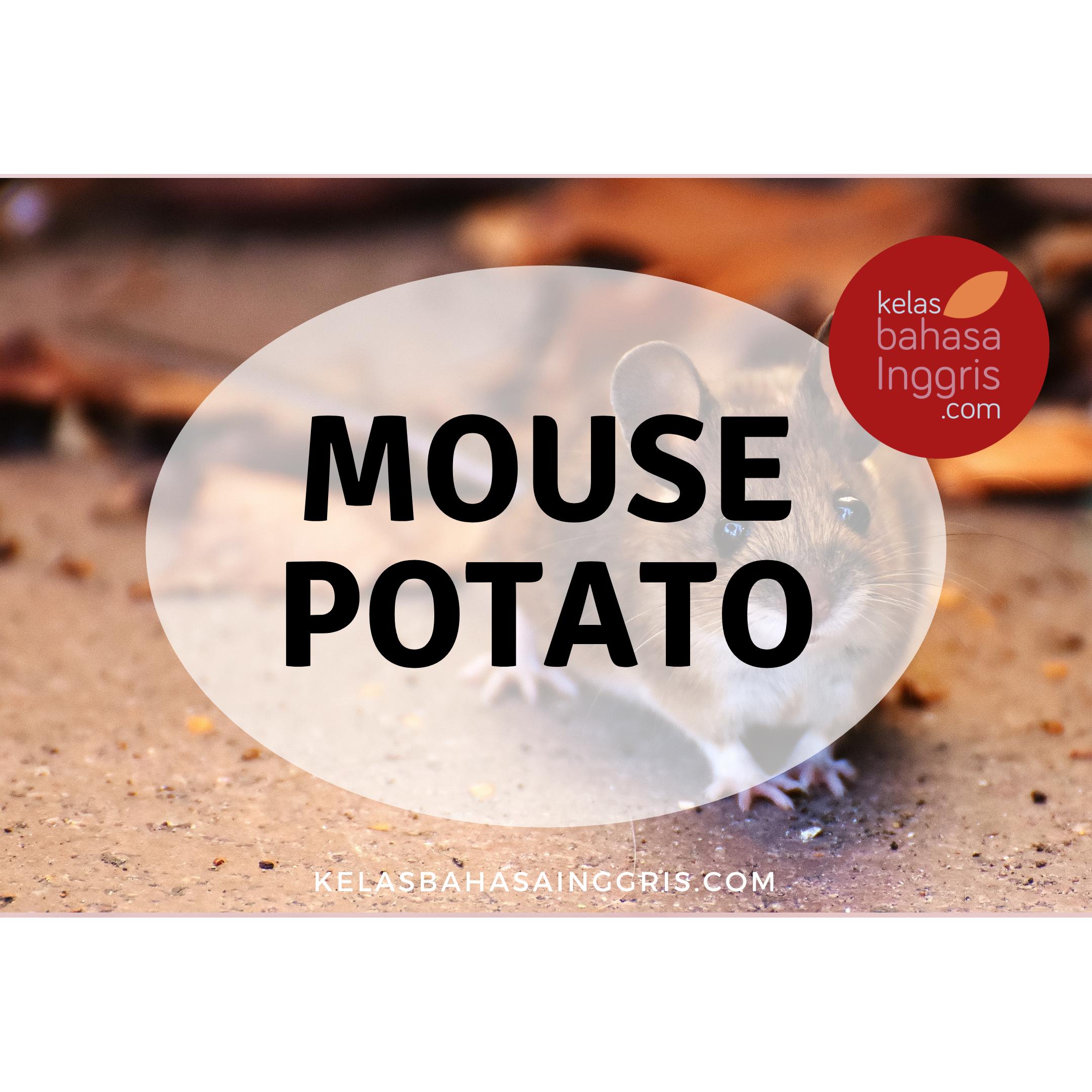 Idiom Bahasa Inggris mouse potato
